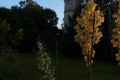 kastélyszálló-szarkavár-virágok